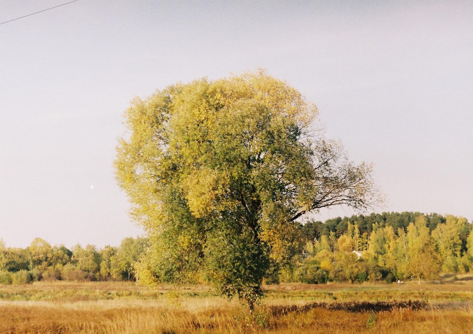 Фотография на Зенит-Е