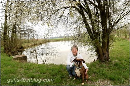 Boxer Amy und ich am Fischweiher