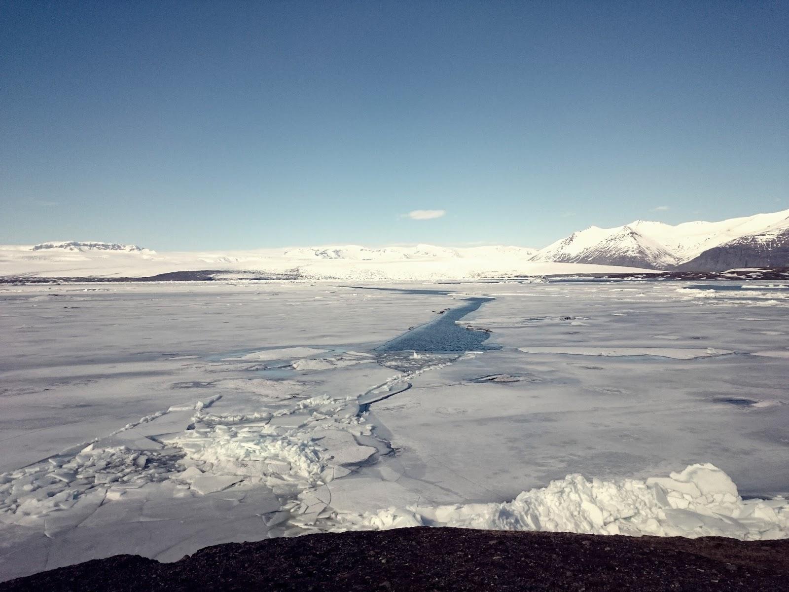 Laguna Lodowcowa, Islandia, panidorcia, blog o Islandii