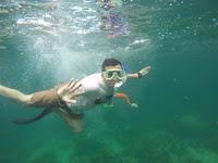 Pulau Abang, Paket Wisata Snorkeling Pulau Abang Batam, Biaya ke Pulau Abang Batam, cara ke pulau abang batam, penginapan di pulau abang batam, pulau abang snorkeling, travel ke pulau abang, biaya ke pulau abang batam, pulau petong batam, trip pulau abang, batam snorkeling price, abang island snorkeling, batam snorkeling tour, singapore to abang island, tempat snorkeling di batam, pulau abang resort, pulau abang di batam, Wisata Bahari Pulau Abang, Pulau Abang Kepri, paket wisata pulau abang batam, paket wisata murah pulau abang batam