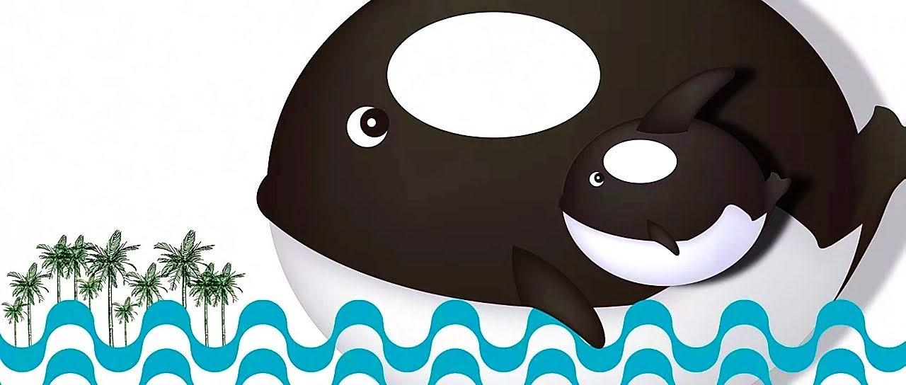 全球最大呆萌虎鯨Orca夏日嘉年華|7/15安平水景公園正式開幕|展出資訊與交通全攻略|活動
