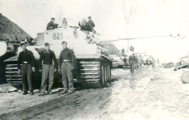 Tiger «821»
