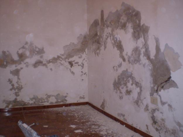 Como eliminar manchas de humedad en la pared finest como - Manchas de humedad ...