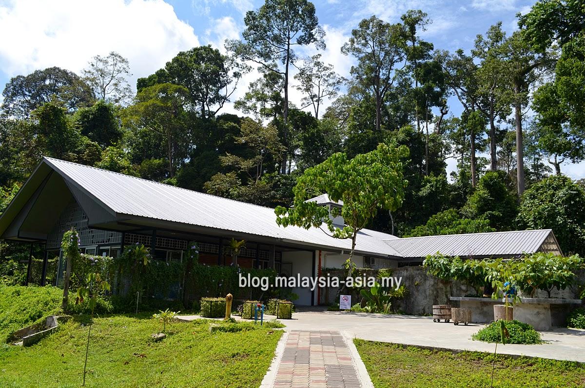 Bornean Sun Bear Conservation Centre Office