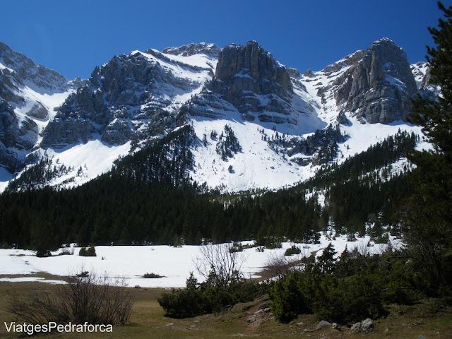 Prat de Cadí, Parc natural del Cadí-Moixeró, La Cerdanya, Catalunya, Pirineus Catalans