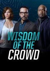 Wisdom of the Crowd Temporada 1 capitulo 1