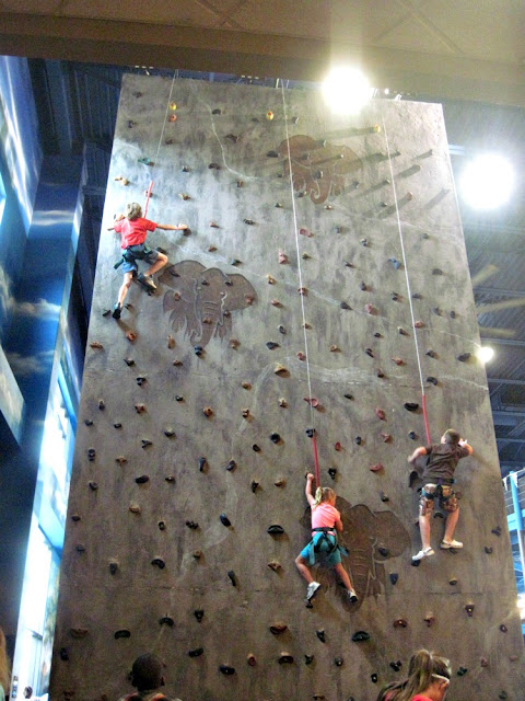 indoor theme park climbing wall