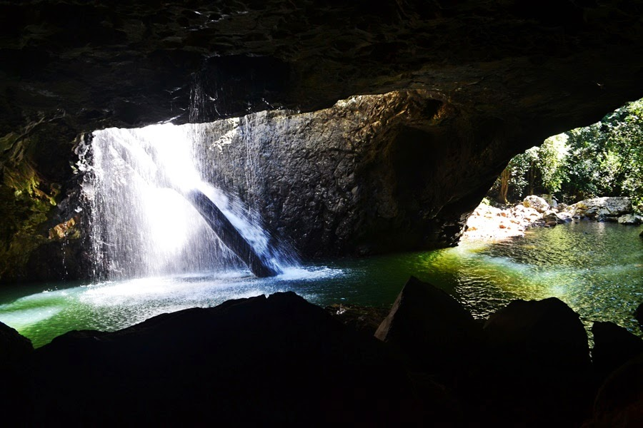 natural bridge, gold coast, surfers paradise,springbrook national park
