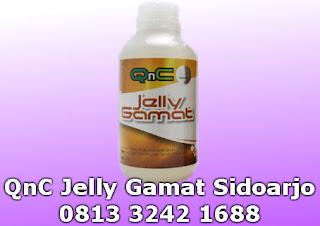 agen penjual qnc jelly gamat di sidoarjo