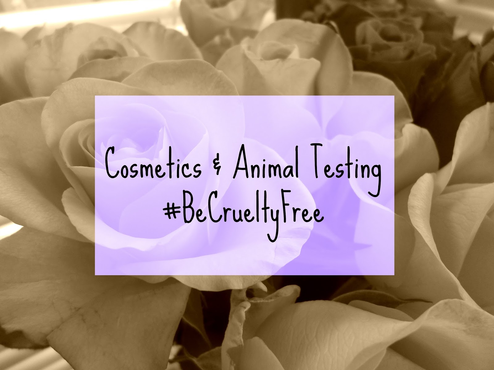 Cosmetics & Animal Testing - #BeCrueltyFree