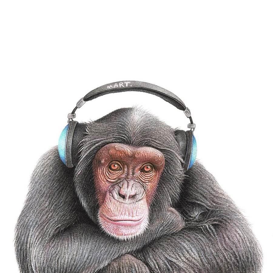 06-Chimp-Martin-Aveling-Animal-Portraits-www-designstack-co