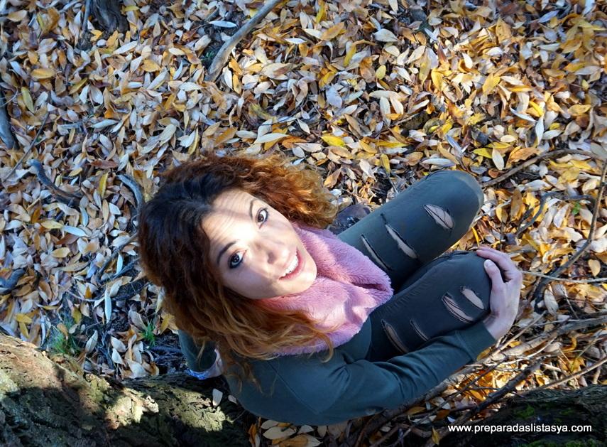 Paisaje Segovia otoño