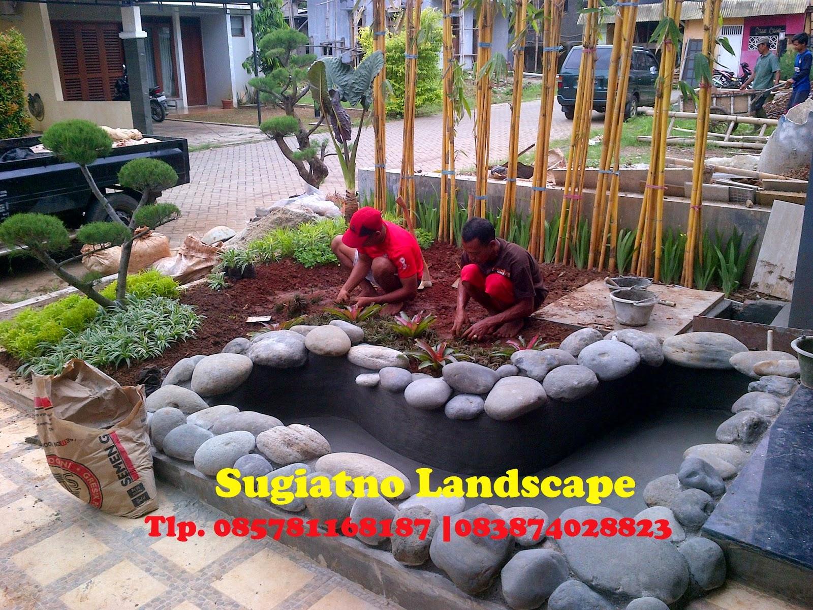 TUKANG TAMAN, Project Taman kolam minimalis depan rumah | Tukang taman | Grosir Tanaman Hias