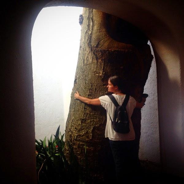 Dormiremos en el Hotel Villas Arqueológicas  porque está muy cerca y se puede ir andando a  visitar la ciudad maya. Me encanta que el hotel  fue construido respetando grandes árboles que  aun permanecen dentro. Al llegar les damos  un abrazo para saludarlos.