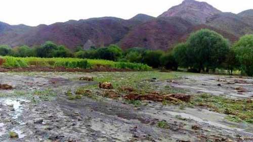 Yunchará sufre desborde del río San Juan del Oro