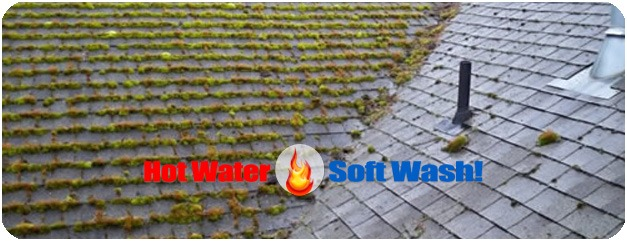Roof Washing Services in New Hampshire