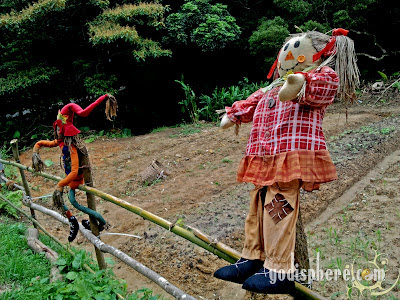 Two colorful scarecrows on the fence in tea garden