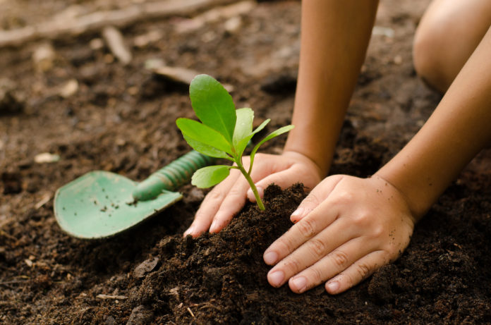 Lima Dukungan Nyata APRIL Pulp Untuk Mencegah Kebakaran Hutan