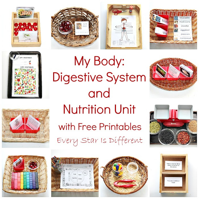 My Body:  Digestive System and Nutrition Unit for kids with free printables