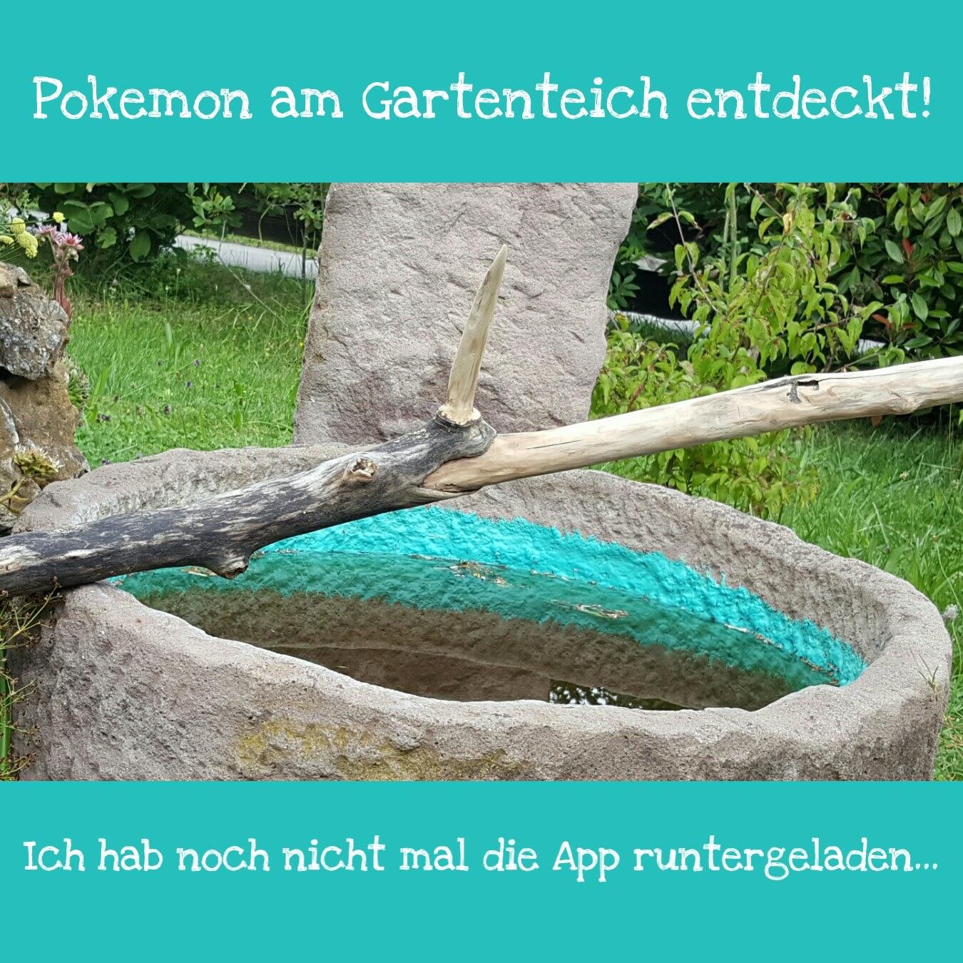 Pokemon Go Spielregeln