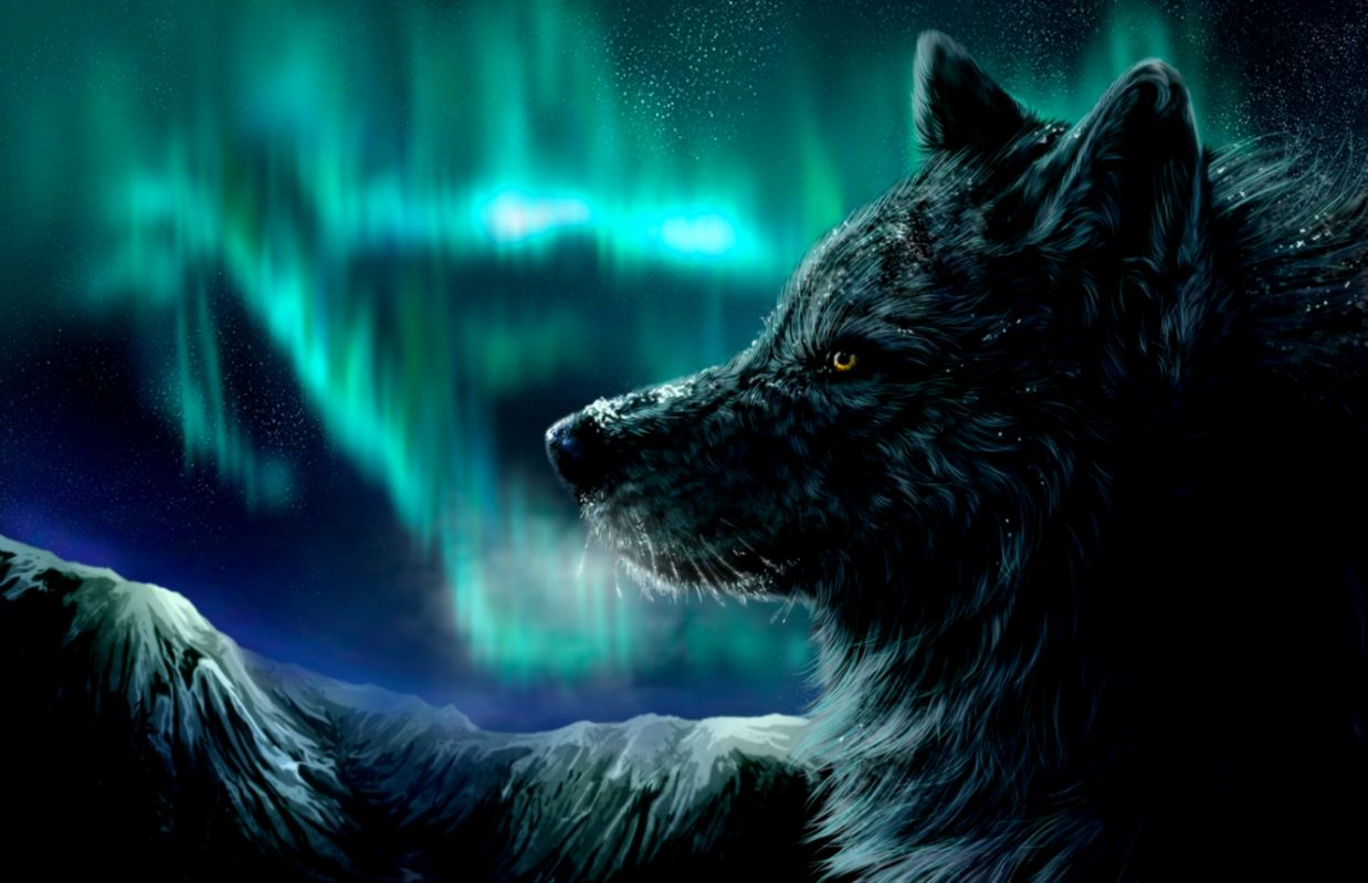 Wallpaper mountains night Northern lights Wolf images for