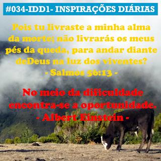034-IDD1- Ideia do Dia 1