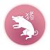 Suur Hiina horoskoop - Siga (Metssiga)