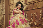 shriya saran cmr shopping mall ad-thumbnail-20