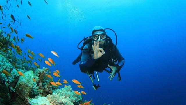 Potápeč v moři s rybkami