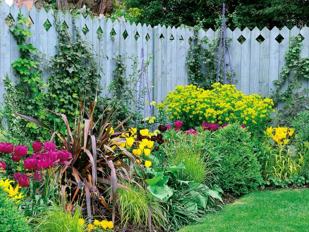 This stockade style fence is blue stained and features a diamond tipped design. It is the backdrop for a colorful perennial garden that blooms all summer.