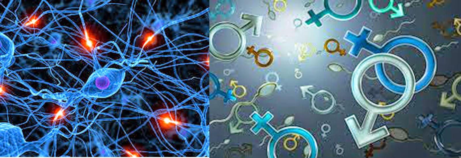 60 istilah bidang biologi beserta penjelasan singkatnya
