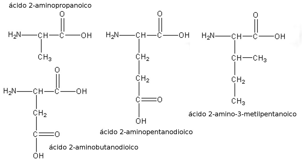 Lenguaje Químico Inorgánico Y Orgánico Aminoácidos Nombre Sistemático