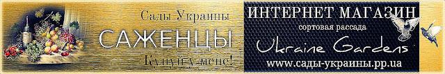 """Саженцы, рассада почтой Украина. Интернет магазин """"Сады Украины"""""""
