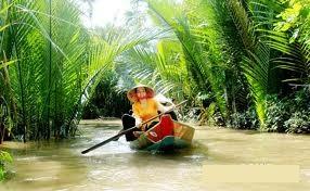 Ben Tre, Dừa Bến Tre