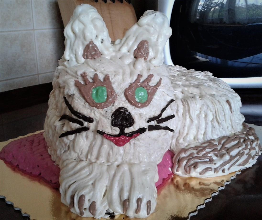 Asia Torty Urodzinowy Kot