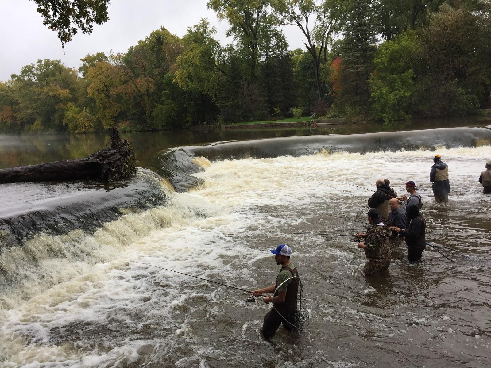 Milwaukee area parks sunrises salmon fall hiking for Milwaukee river fishing