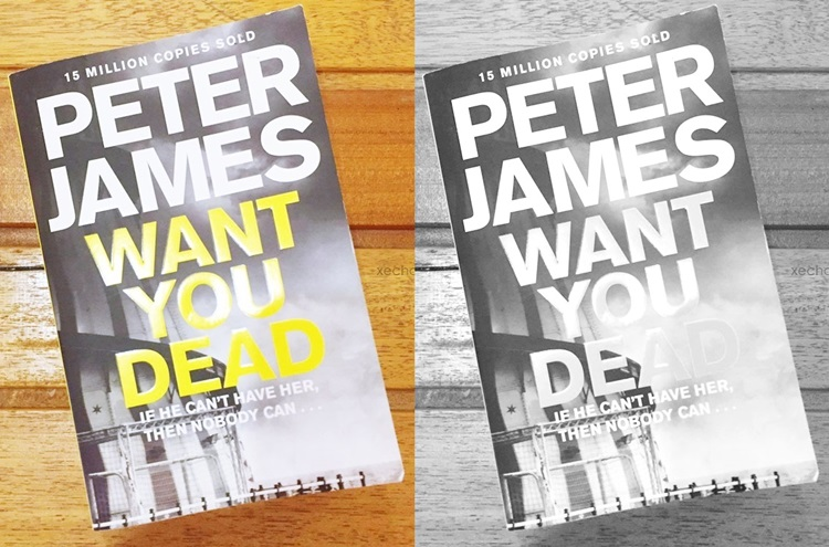 want you dead, peter james, novel review