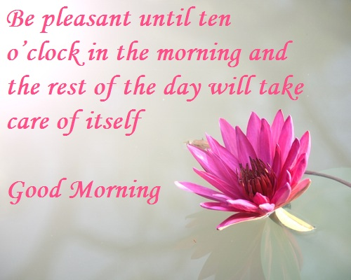 Good Morning Flower Images With English Quotes