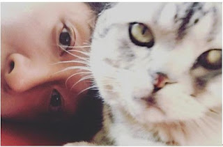 Han Geng cat