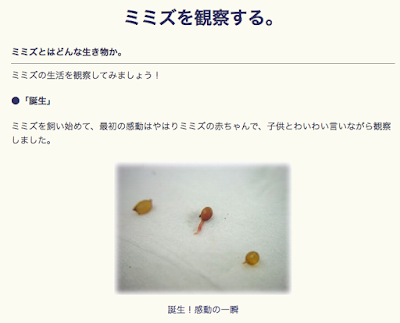 http://www.geocities.co.jp/NatureLand/1718/kansatu.html