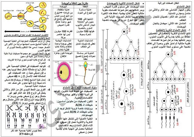ملخصات العلوم الطبيعية للسنة الرابعة متوسط خالد محمودي