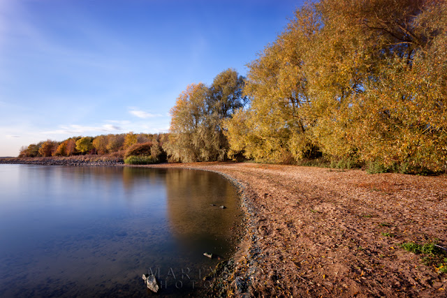 The reservoir at Grafham Water in Cambridgeshire with trees in autumn bloom