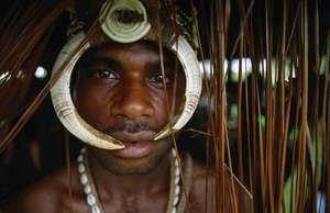 cultura de semnen eb tribuSambia