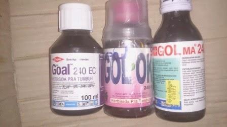 calium tanaman, Goal,Golma,Gol OK, butiran halus, cabe, tomat, boron