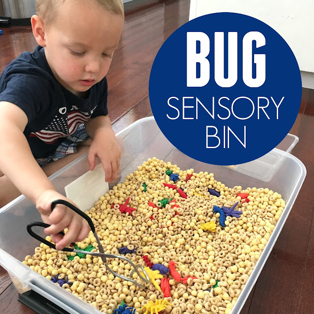 insect themed sensory bin for kids