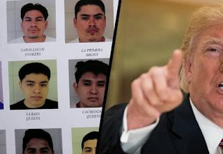 Hardcore Criminals Getting Deported Under Trump