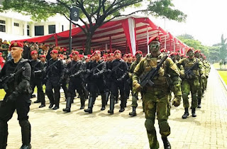 Satuan Infanteri Kopassus