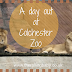 A Day Out at Colchester Zoo