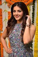 Actress Mehreen Kaur Latest 2017 Po Stills17 ~  Exclusive Celebrities Galleries.jpg