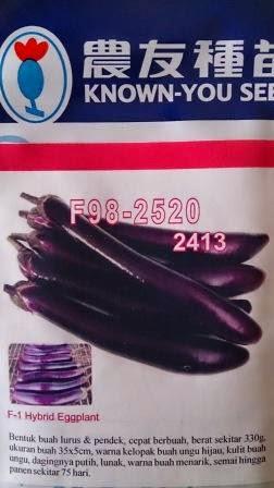 tahan layu, daging keras, buah panjang, tahan virus, hasil tinggi, terong, benih, bibit, Known You Seed, Terong Ungu F 98 - 2520, Taiwan, Terong Ungu Taiwan